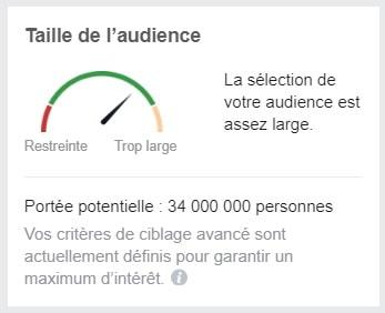 Taille audience gestionnaire de publicité Facebook-min